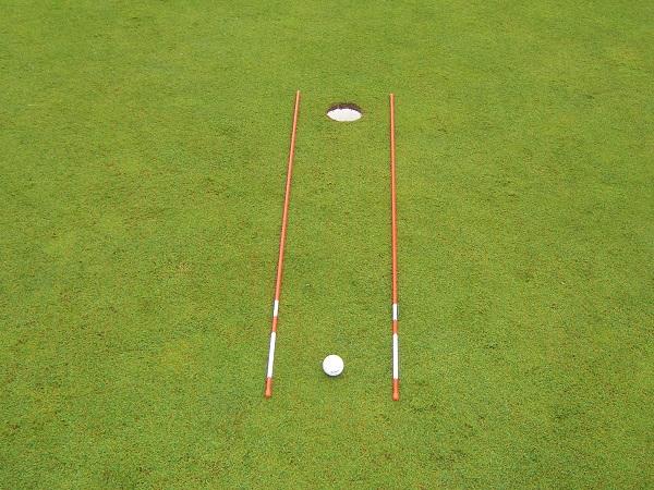 putting alignment sticks
