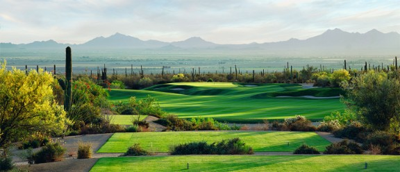 dove mountain golf