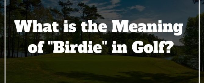 meaning of birdie in golf