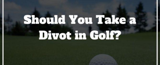 golf divots